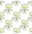 Seamless cartooned cauliflower vegetable vector image