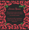 flourish frame with red roses buds vector image