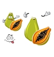 Cartoon exotic hawaiian green papaya fruit vector image vector image