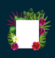cute framework with exotic flowers plants vector image vector image