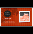 Farm animal background with pig vector image vector image