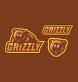 grizzly mascot logo design vector image