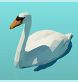 isometric white swan on water vector image vector image