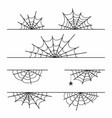spider web set isolated on background halloween vector image vector image