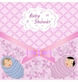 baby shower for two babies vector image