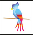 colorful parrot sitting on the heart vector image vector image