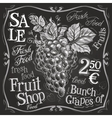 grapes logo design template fresh fruit vector image vector image