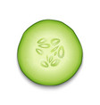 photo-realistic 3d slice juicy cucumber icon vector image vector image