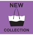 Fashionable bag vector image