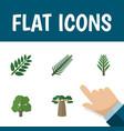 flat icon ecology set of jungle decoration tree vector image