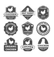 set of premium chicken labels badges and design vector image vector image