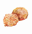 two round wafers baked in a waffle iron vector image vector image