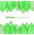 spring leaves background vector image