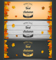 Autumn banners set autumn sale background with