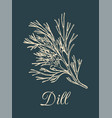 dill on dark background hand vector image