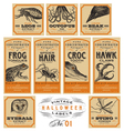 funny vintage halloween apothecary labels - set 01 vector image vector image