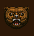 grizzly brown bear screaming mad animal for vector image vector image