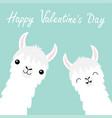 happy valentines day llama alpaca animal set face vector image vector image