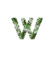 logo letter w tropical leaves vector image vector image