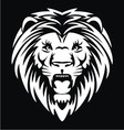 white lion head vector image vector image