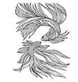 two small fishes yin-yang hand-drawn vector image