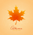 Abstract background with maple leaf vector image vector image