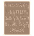 Beige latin alphabet symbols vector image