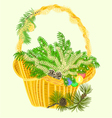 Christmas decoration basket with branches vector image vector image