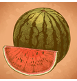 engraving watermelon and slice retro vector image vector image
