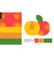 food patterns fruit peach vector image vector image