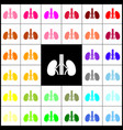 human anatomy kidneys sign felt-pen 33 vector image vector image