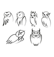 Owl bird icons in doodle outline style vector image vector image