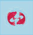 two koi carps splashing in water and swim vector image