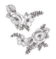 blooming flower hand drawn blossom branches vector image vector image