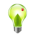 Eco Bulb With Ladybug vector image vector image