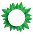 leaves round vector image