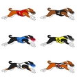 basenji dog racing set 01 vector image vector image