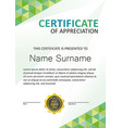 certificate modern template vertical vector image vector image
