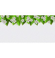 Green leaves flowers frame background