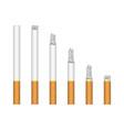 set burning cigarette vector image