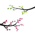 tree branch illustration design vector image vector image