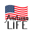 american flag with inscription brush american life vector image vector image