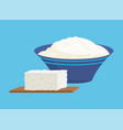 cottage cheese portions set vector image vector image