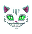 fantasy scary smiling cat face vector image