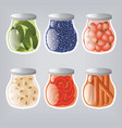 food ingredients vector image