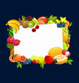 frame with tropical fruits cartoon border vector image vector image