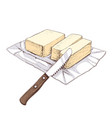 hand drawn sketch butter with a knife vector image vector image