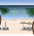 Landscape of a beach with white sand sea vector image