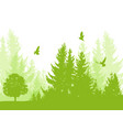nature background with firs vector image vector image