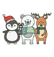 polar bear penguin and deer with gift celebration vector image vector image